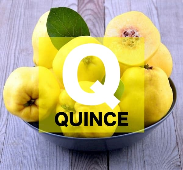 List of Fruits Names starts with Q