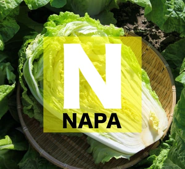 List of Vegetables Names starts with N
